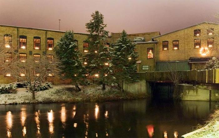 Light Up Your Holidays at Plainwell's Tree Lighting