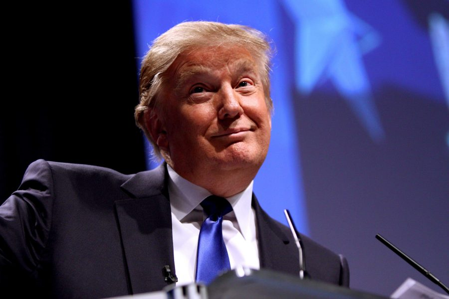 Donald Trump election will do the opposite of