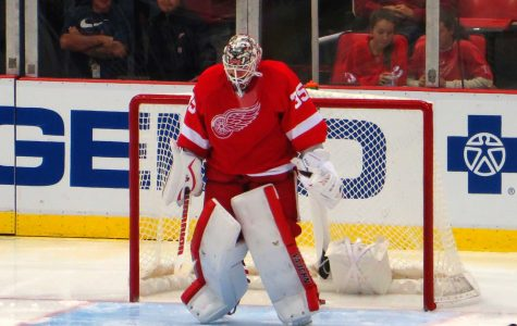 Red wing in a point drought, face not making NHL playoffs