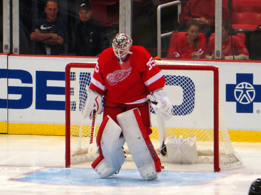 Red+wing+in+a+point+drought%2C+face+not+making+NHL+playoffs