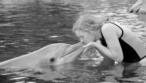 Nothing says spring break like kissing a dolphin.