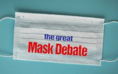 To Mask or Not to Mask?